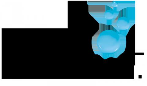 Bristol Sinks logo